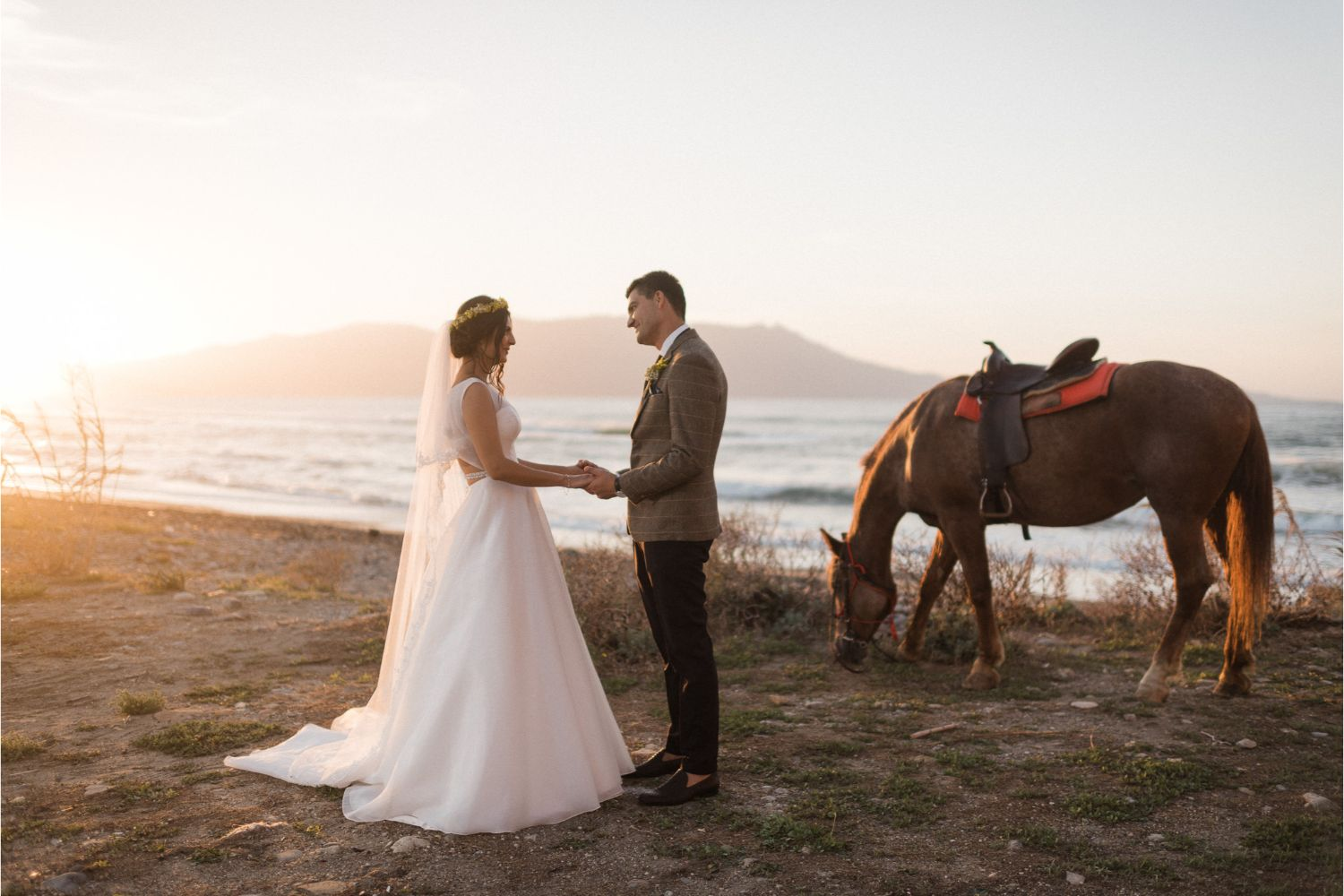 newlyweds photoshoot with horses on the beach